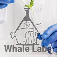 Whale labs Pty Ltd